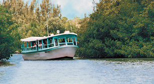 Tropic Star Ferry And Boat Tours