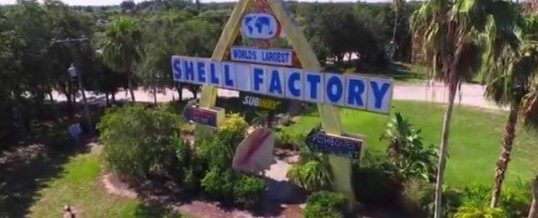 Shell Factory And Nature Park